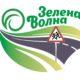 Старт областных этапов конкурса-фестиваля «Зеленая волна» в Новосибирской области